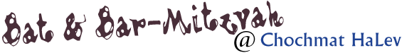 b'nai mitzvah log